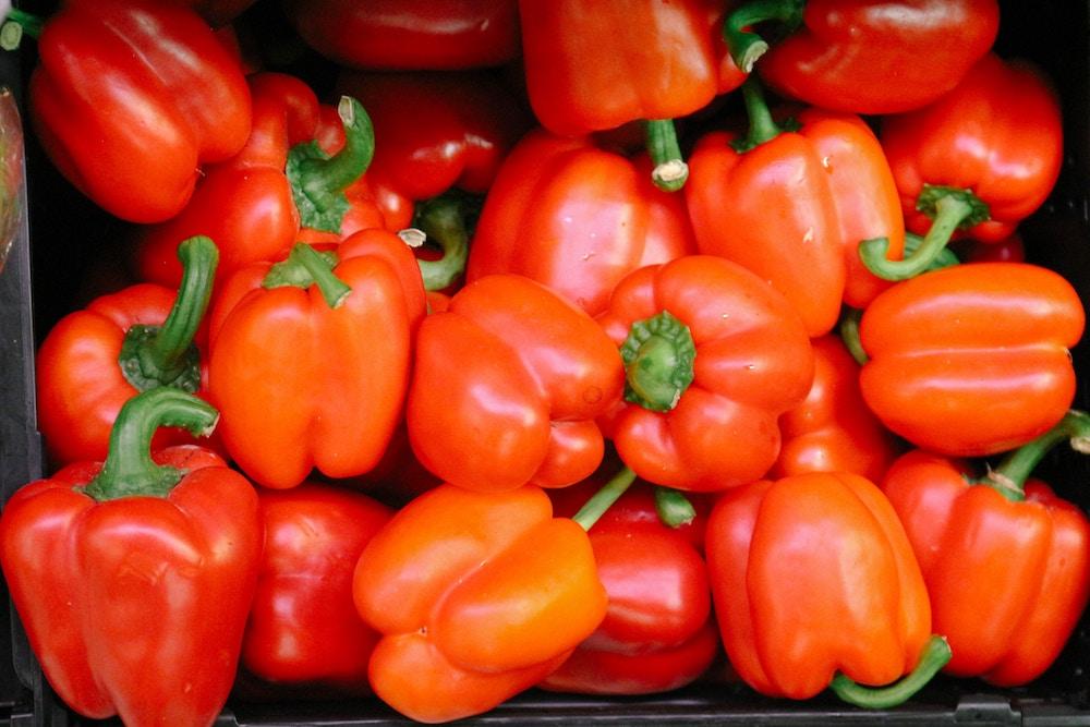 Paprika gegen Seekrankheit beim Segeln